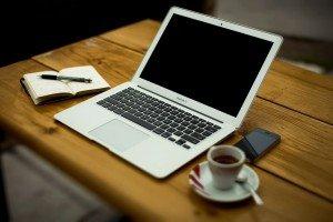 freelance vs professional writer